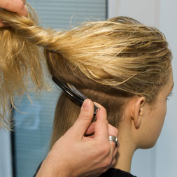 section-hair