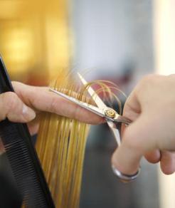 trim-regularly